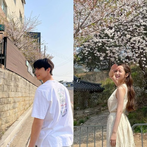 The couple revealed a photo of cherry blossom viewing in the same place