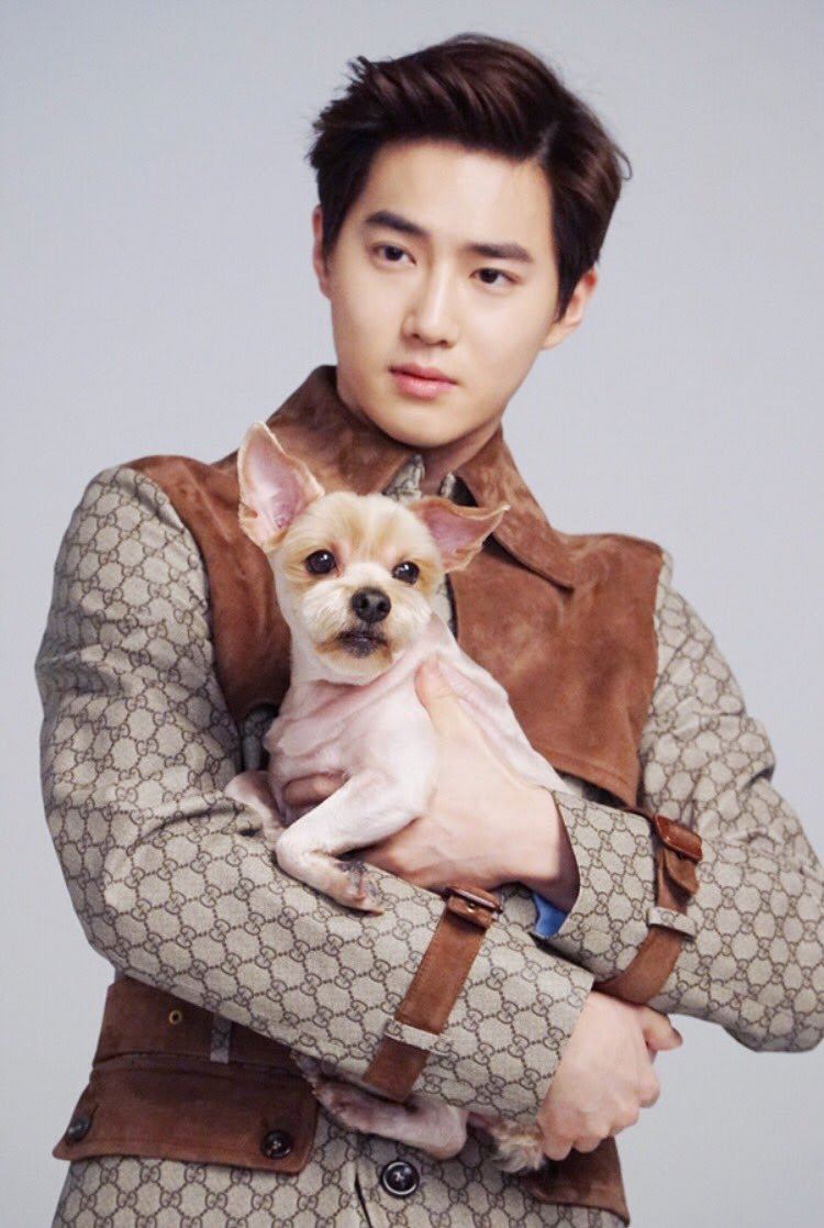 Suho (EXO) – Byul